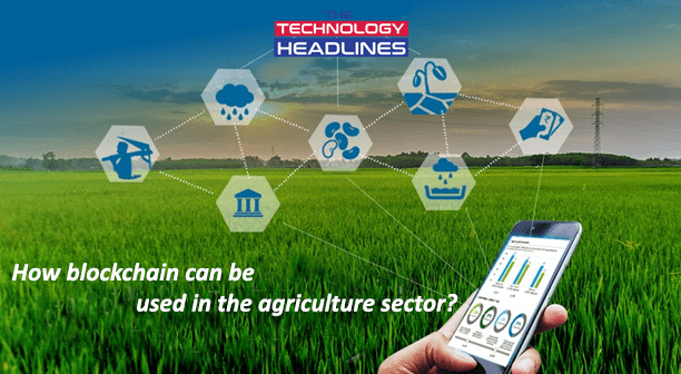 How blockchain can be used in agriculture sector?