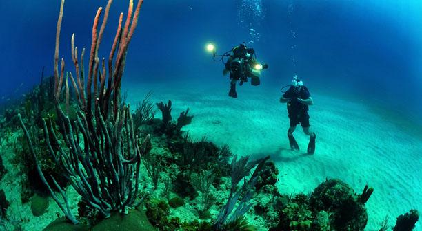 Welcome Nemo - The Underwater Drone